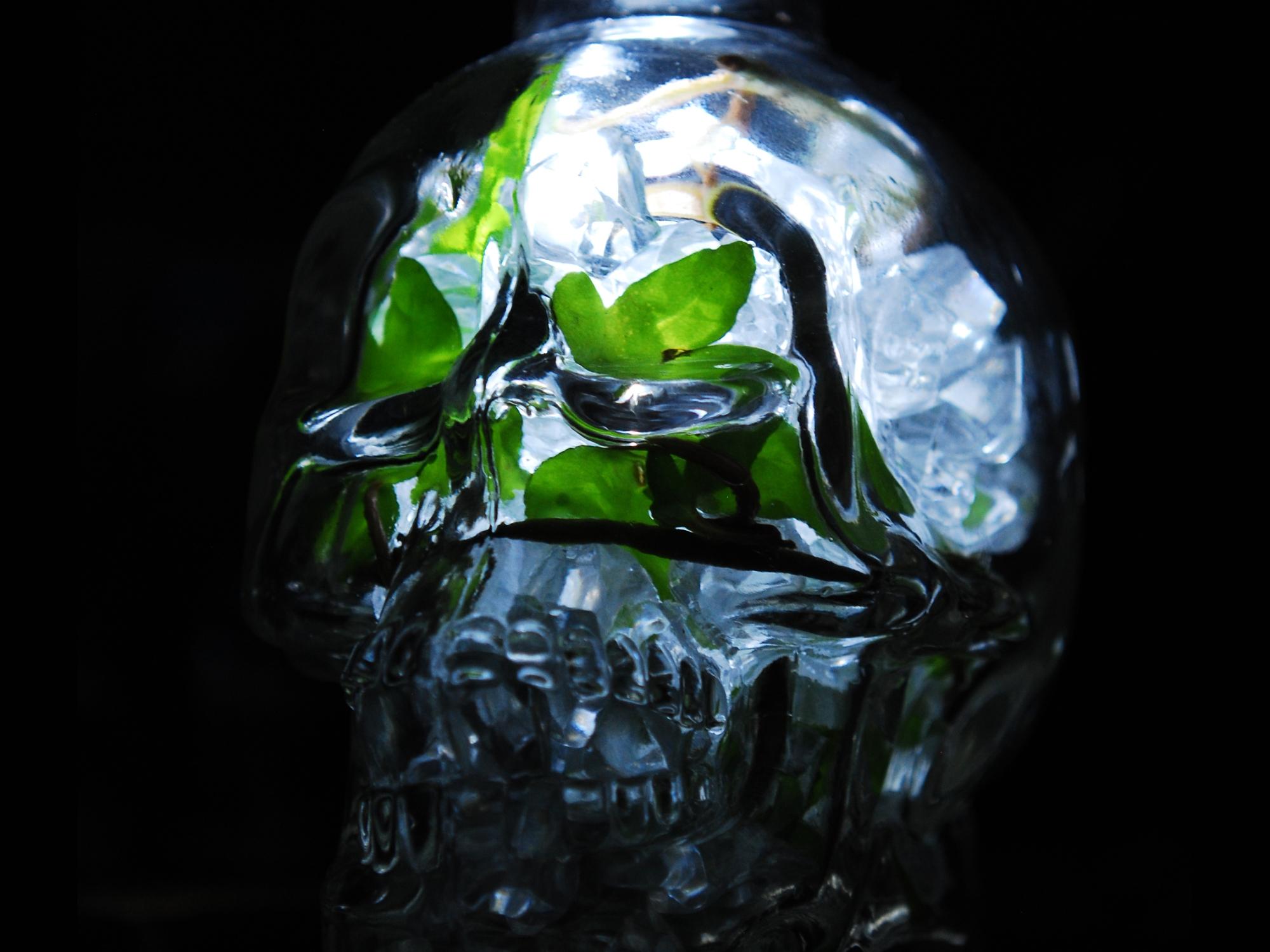 The Crystalline Skull